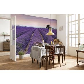Mural-de-Parede-Provence