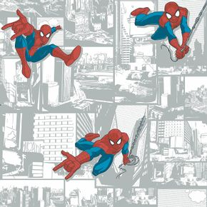 homem-aranha-dy0256