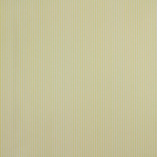 Papel de Parede Listrado Classic Stripes CT889028 Vinílico - Rolo: 10m x 0,53m