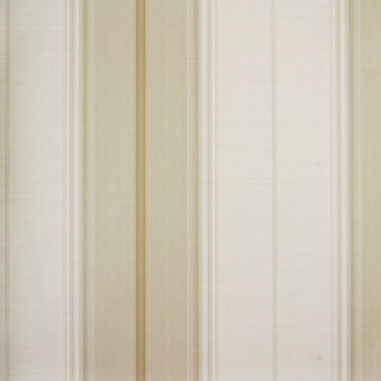Papel de Parede Listrado Classic Stripes CT889104 Vinílico - Rolo: 10m x 0,53m