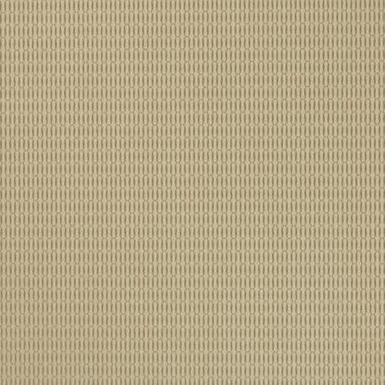 Papel de Parede Vinílico Bright Wall Y6131102