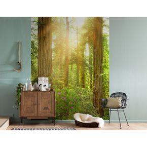 Mural-de-Parede-Parque-Nacional-de-Redwood-California