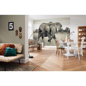 Mural-de-Parede-Elefante-Africano