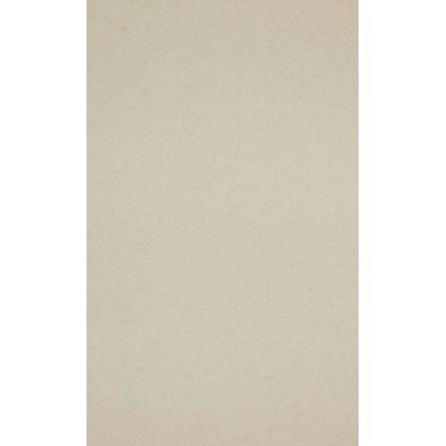 papel-de-parede-HEJ-218302-bege