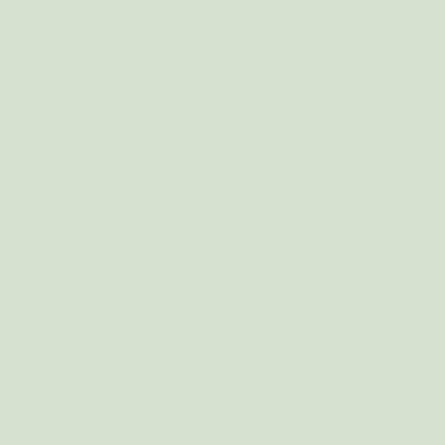Papel de Parede Little Bandits Cor Única Verde 145138923 - Rolo: 10m x 0,53m