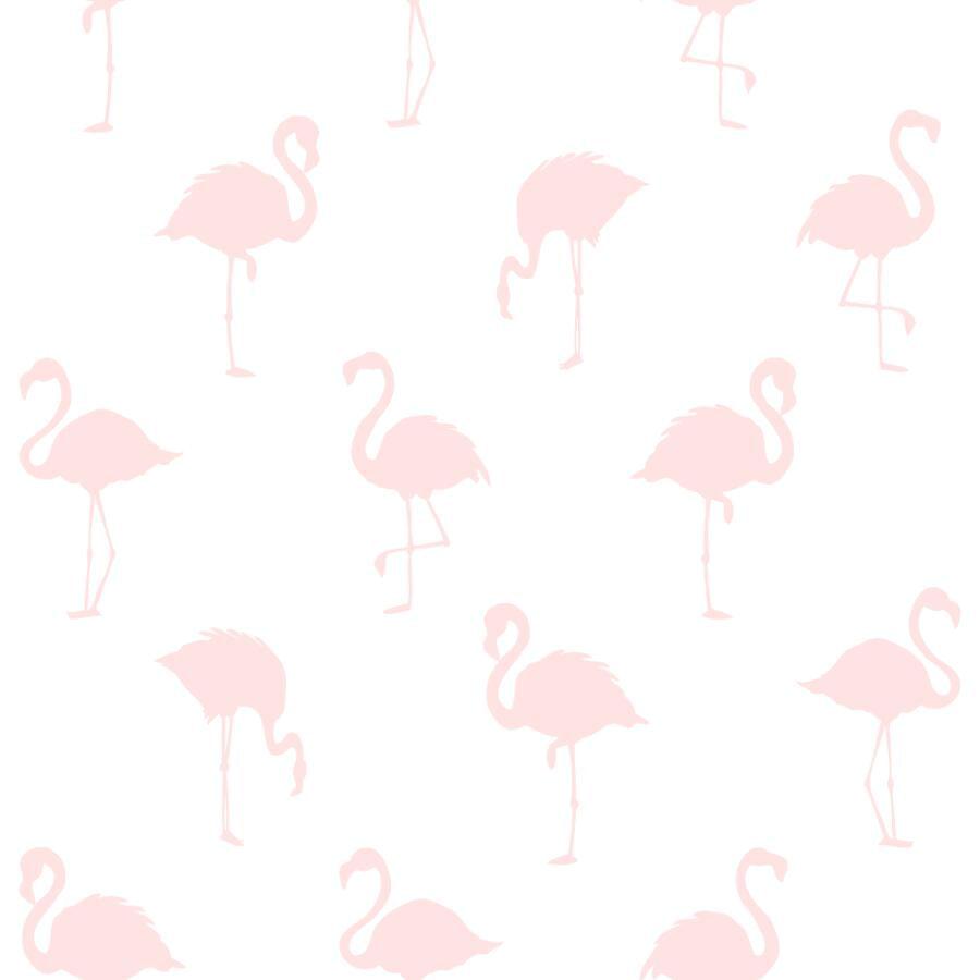 Papel de Parede Little Bandits Flamingos 145138918 - Rolo: 10m x 0,53m