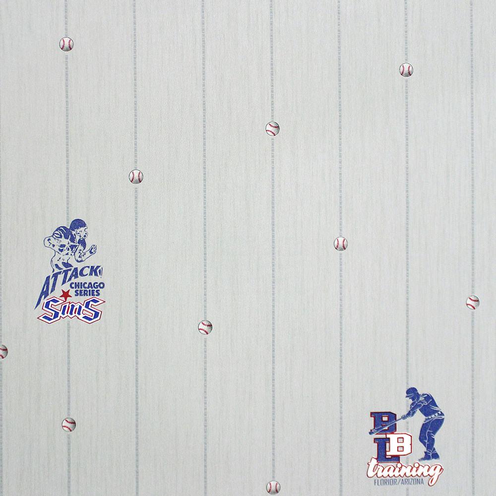 Papel de Parede All Kids Linha Esportiva H2910405 - Rolo: 10m x 0,53m