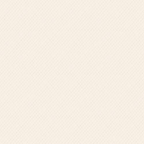 Papel de Parede Esplendido Geométrico Suave wp0110305 - Rolo: 10m x 0,53m