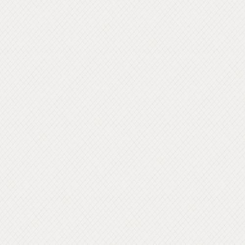 Papel de Parede Esplendido Geométrico Suave wp0110302 - Rolo: 10m x 0,53m