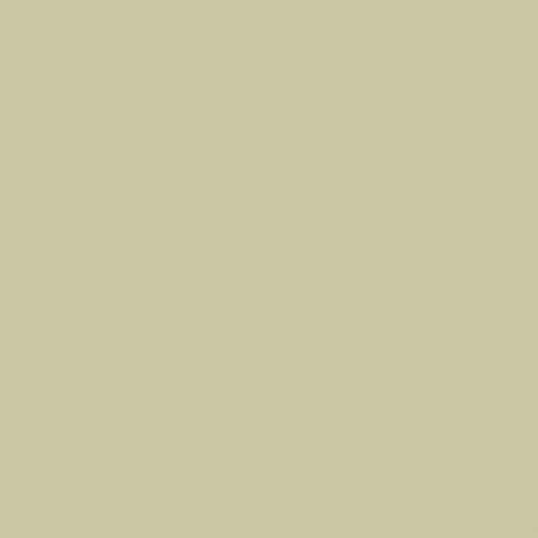 Papel de Parede Basics Simple Color T106073 - Rolo 10m x 0,53m