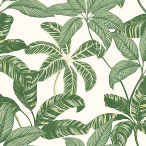 Papel-de-Parede-Vinilico-Contemporaneo-Natural-Folhagens-Verde-4100